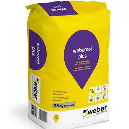 Image de Webercol plus grijs 25kg
