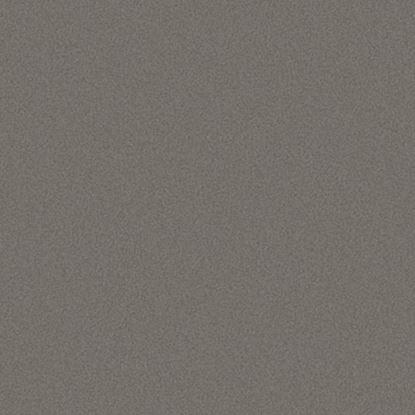 Picture of Trespa Meteon - A05.5.0 Quartz grijs - 3,05X1,53 8mm